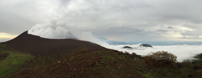 leon Cerro Negro